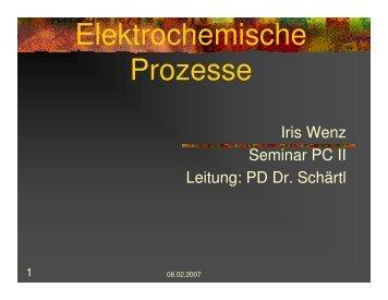 Elektrochemische Prozesse