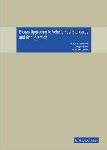 upgrading report - Biogaspartner