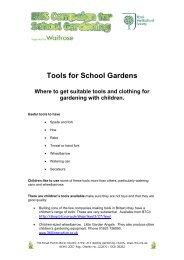 Tools For School Gardens