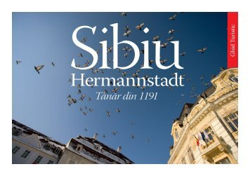 Tânăr din 1191 - Sibiu