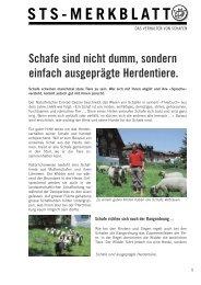 Das Verhalten von Schafen - Schweizer Tierschutz STS