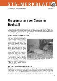 Gruppenhaltung von Sauen im Deckstall - Schweizer Tierschutz STS
