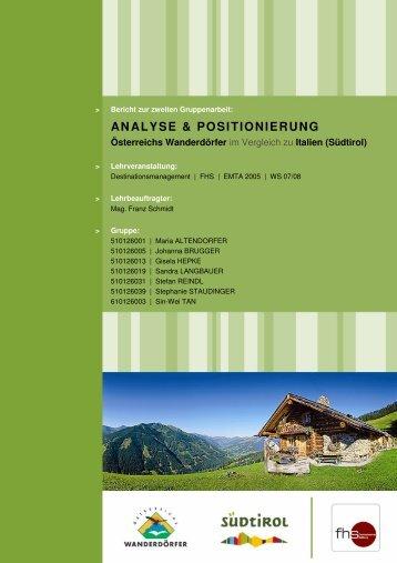 ANALYSE & POSITIONIERUNG - SHIDIWEN.COM