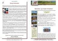 Oplevelses- og vinrejser til Tyskland - Mosel rejser