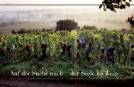 Auf der Suche nach der Seele im Wein - Weingut Georg Mosbacher