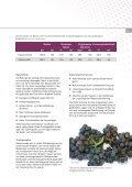 Wein deutsch - K+S KALI GmbH - Seite 5