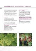 Wein deutsch - K+S KALI GmbH - Seite 6