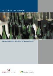 PDF 843 KB - Kisling Consulting
