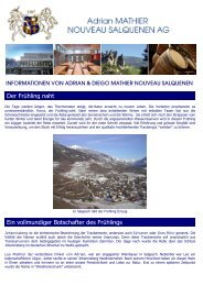 Newsletter 2009 2 - Mathier