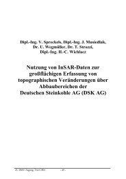 Nutzung von InSAR-Daten zur großflächigen Erfassung... - Institut für ...