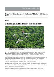 Nationalpark Hainich ist Weltnaturerbe - Nationalpark Steigerwald