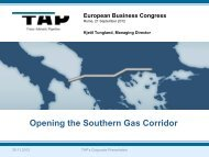 Opening the Southern Gas Corridor - EBC European Business ...