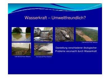 Wasserkraft – Umweltfreundlich? - Rettet die Mur!