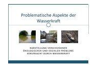 Problematische Aspekte der Wasserkraft - Rettet die Mur!