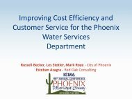 Improving Cost Efficiency and Customer Service for the ... - ICMA