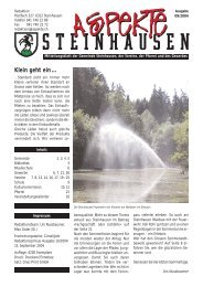 Ausgabe 09/2004 - Aspekte Steinhausen