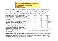 Wärmelehre (Thermodynamik)