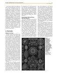 Reller 263 - Institut für Physik - Universität Augsburg - Seite 2