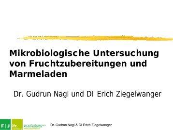 Mikrobiologische Untersuchung von Fruchtzubereitungen