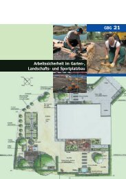 Arbeitssicherheit im Garten-, Landschafts- und Sportplatzbau ... - LSV