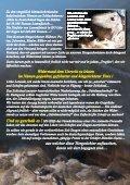 bitte hier klicken... - Pro Animale - Seite 3