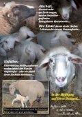 bitte hier klicken... - Pro Animale - Seite 4