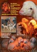 bitte hier klicken... - Pro Animale - Seite 7