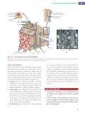 hoofdstukoverzicht - Pearson Education - Page 6