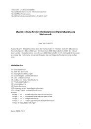 Vorläufige Studienordnung (korr. 11.10.2010) - Fakultät ...