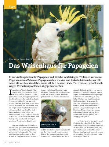 """""""Das Waisenhaus für Papageien"""" lesen - Auffangstation für ..."""