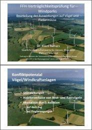 Konfliktpotenzial Vögel/Windkraftanlagen - Naturschutz-Akademie ...