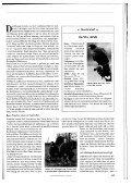 Beizjagd mit Harris Hawk und Teckel - vom Wolbecker Forst - Page 2