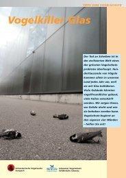 Vogelkiller Glas - Window collisions