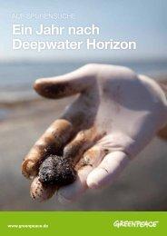 Ein Jahr nach Deepwater Horizon - Greenpeace