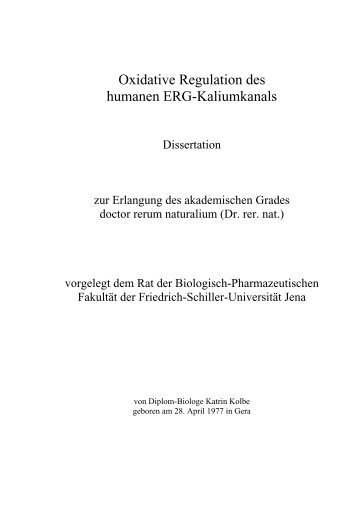 Oxidative Regulation des humanen ERG-Kaliumkanals