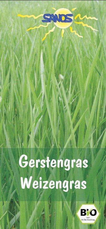 Gerstengras Weizengras - Weizengras, Gerstengras, Alfalfa