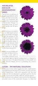 to download the PDF file. - Inno-Vite - Page 3