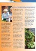 VillaNEWS VillaNEWS - Villa Maria - Page 4