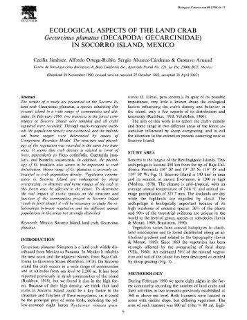 ECOLOGICAL ASPECTS OF THE LAND CRAB ... - bashanfoundation