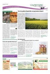 Die Ginseng-Gärten – einzigartig in Deutschland. - Heidezeitung