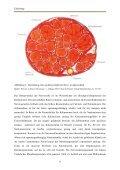 Die Wertigkeit des Nervenleitgeschwindigkeitsspektrums im ... - Seite 6