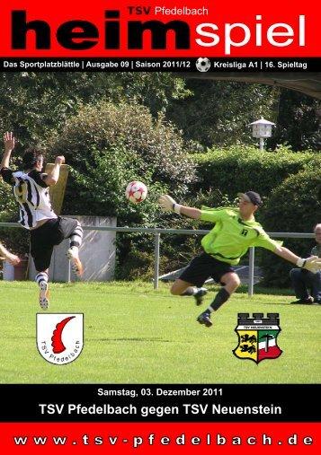 9. Heft gegen TSV Neuenstein 03.12.2011 - TSV Pfedelbach