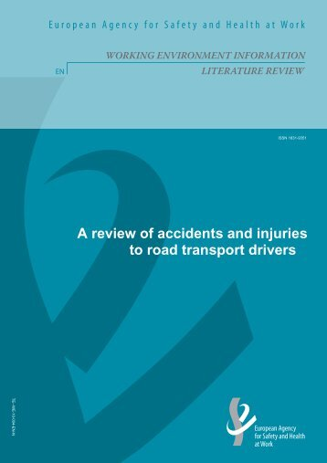 A review of accidents and injuries to road - European Agency for ...