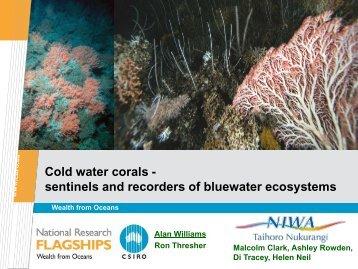 Cold water corals as Sentinels