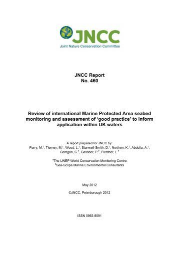 Review of international Marine Protected Area ... - JNCC - Defra