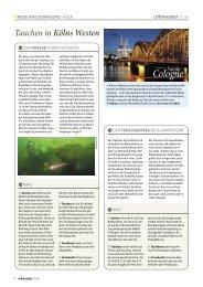 Tauchen in Kölns Westen - Unterwasser