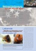 Weihnachtsstimmung - Impulse Singapur - Seite 6