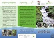 Kleinwasserkraftwerke – NICHT UM JEDEN PREIS ... - Naturfreunde