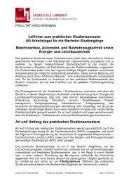 Leitlinien zum Praxissemester - Fachhochschule Landshut