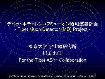 チベット水チェレンコフミューオン観測装置計画 - 東京大学宇宙線研究所
